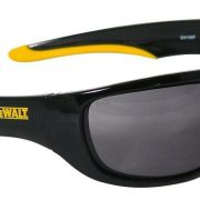 DeWALT DPG94-2D - Dual Mold Safety Glasses