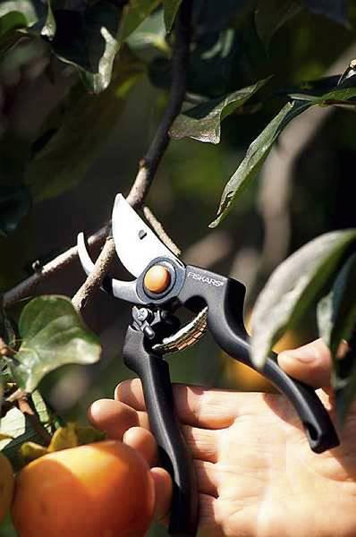 FISKARS_111960_Garden Pro Pruner - Garden Pro Pruner