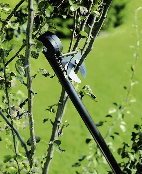 FISKARS_115360_Garden Cutter - Universal Garden Cutter