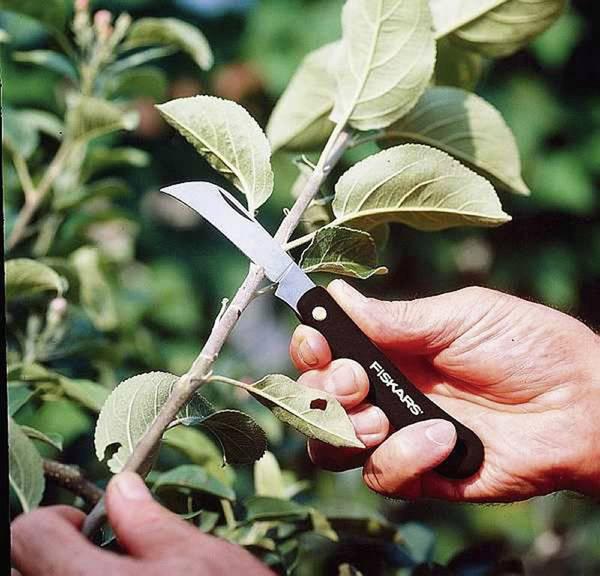 FISKARS_125880_Grafting Knife - Hooked Grafting Knife