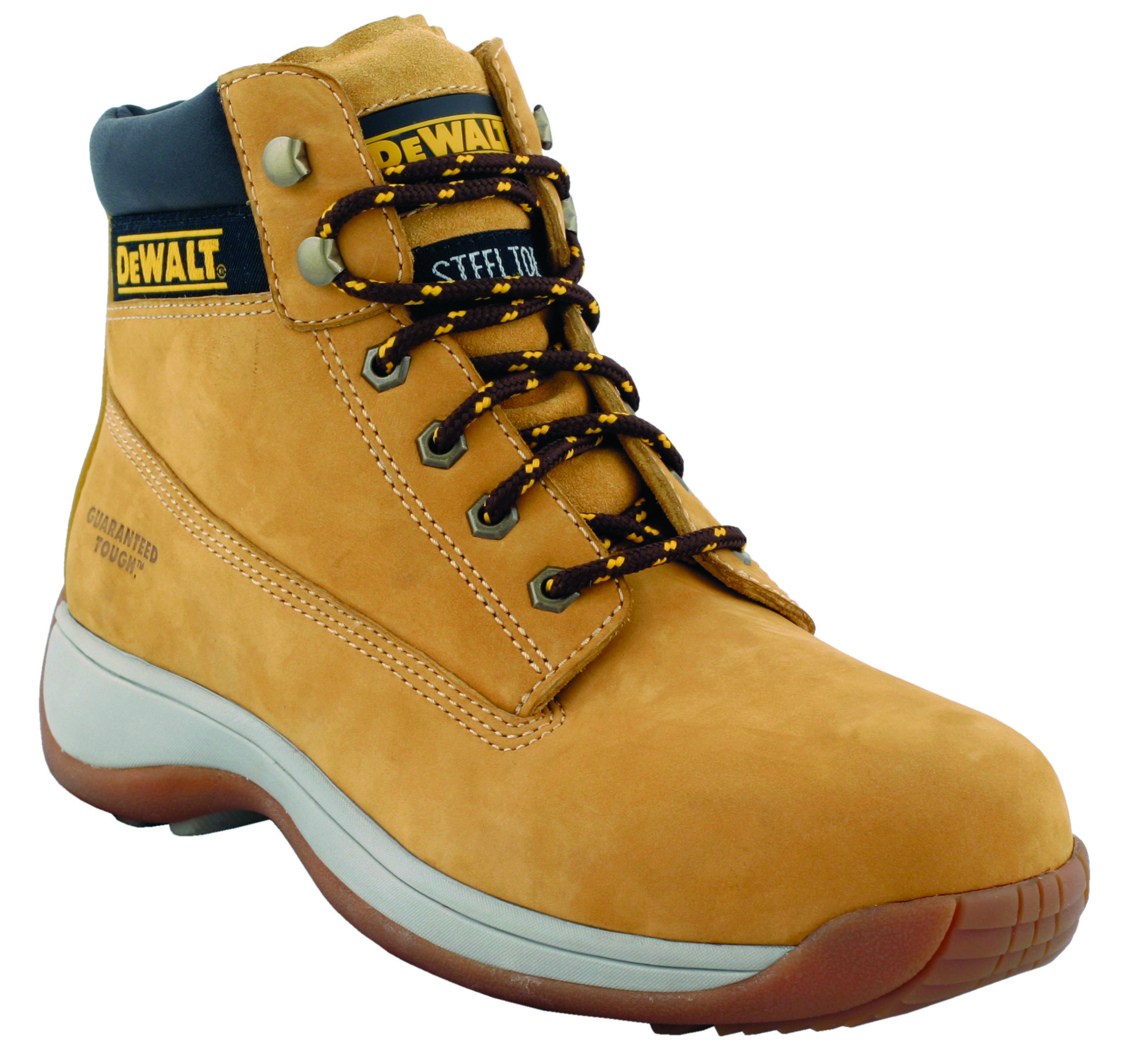 Dewalt 6 in workboot -honey Safety Shoes in Dubai,UAE - APPRENTICE HN from AABTools